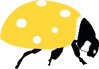Coccinelle Mission pollinisateurs, l'escape game des pollinisateurs sauvages