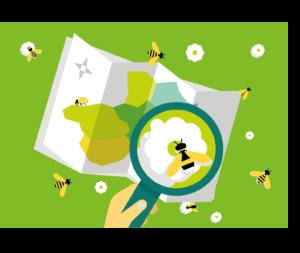 Logo fond Mission pollinisateurs, l'escape game des pollinisateurs sauvages