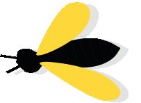 Cyrphe Mission pollinisateurs, l'escape game des pollinisateurs sauvages